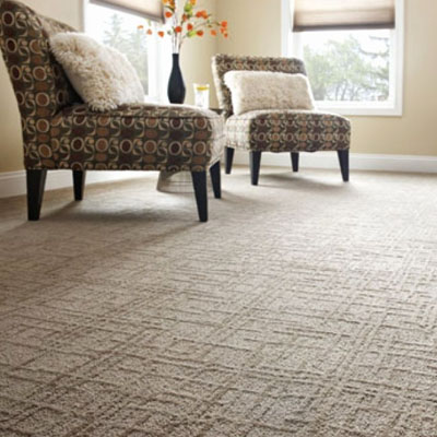 Buy the best carpet you can afford for the heavy traffic areas of your home - halls, stairs, and family rooms.